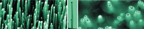 Nanotubes_3